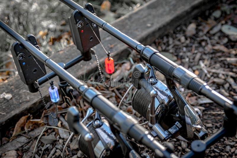 Deux cannes à pêche de carpe sur des alarmes photographie stock