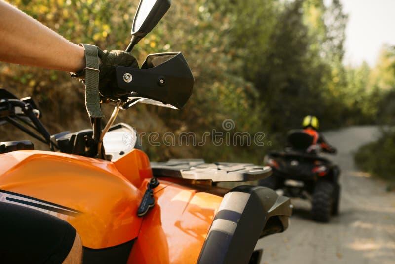Deux cavaliers de vélo de quadruple voyage dans la forêt, vue de face photographie stock
