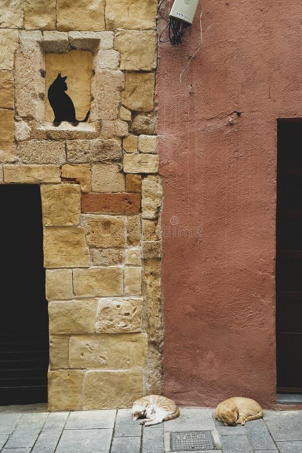 Deux chats dorment sur le ganitz de deux maisons avec un chat noir peint sur le mur, Tarragone, Espagne image stock