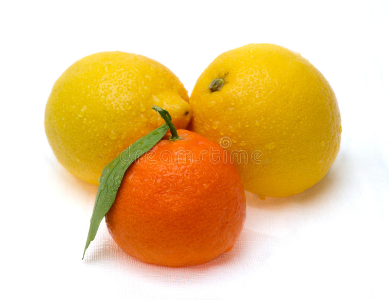 Deux citrons et mandarines photos libres de droits
