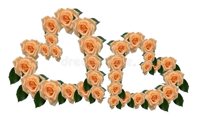 Deux coeurs des roses illustration stock