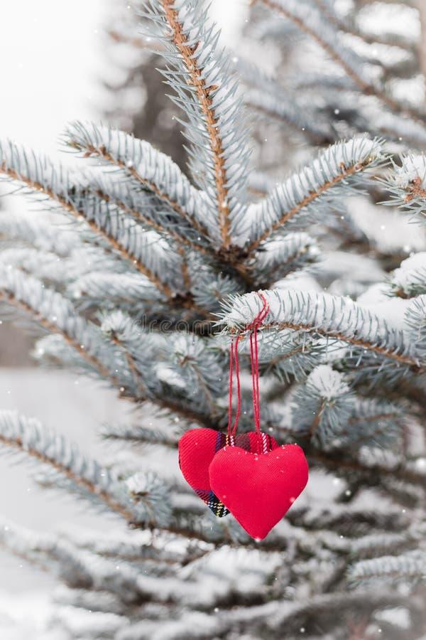 Deux coeurs rouges de textile accrochant sur le concept neigeux de sapin-branche, de salutation de Noël et de Saint-Valentin photo stock