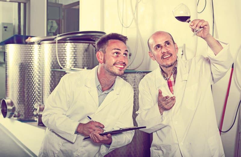 Deux collègues d'hommes dans des manteaux blancs fonctionnant dans la section de fermentation photographie stock libre de droits