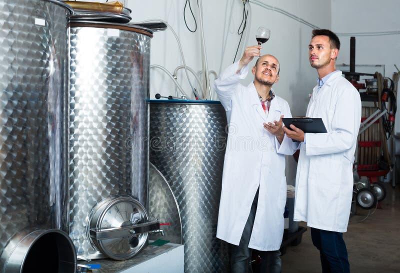 Deux collègues d'hommes dans des manteaux blancs fonctionnant dans la section de fermentation photo stock
