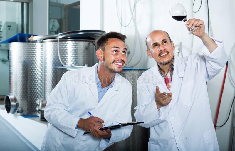 Deux collègues d'hommes dans des manteaux blancs fonctionnant dans la section de fermentation image libre de droits