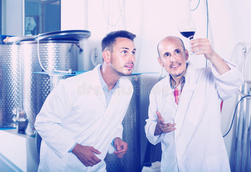 Deux collègues d'hommes dans des manteaux blancs fonctionnant dans la section de fermentation images stock