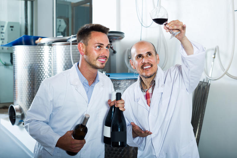 Deux collègues d'hommes dans des manteaux blancs fonctionnant dans la section de fermentation images libres de droits