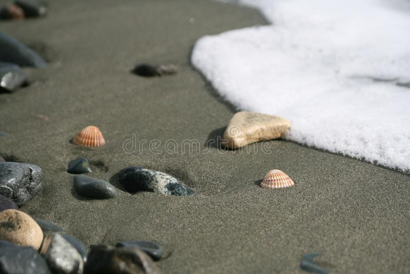 Deux coquillages, cailloux et une vague sur une plage image stock