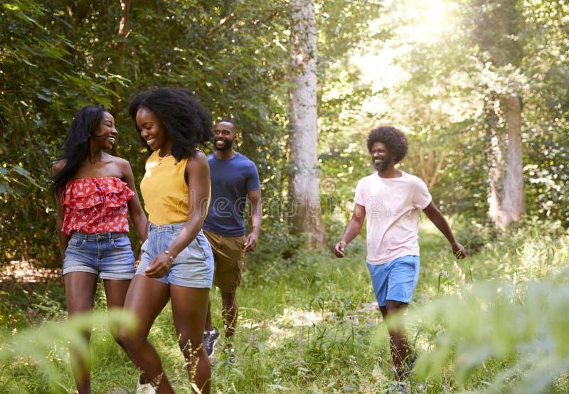 Deux couples adultes noirs appréciant une hausse d'été dans la forêt images libres de droits