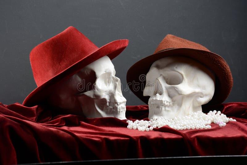 Deux crânes photo libre de droits