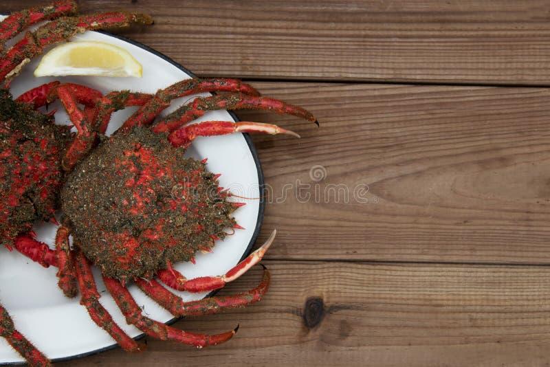 Deux crabes frais de plat photos libres de droits