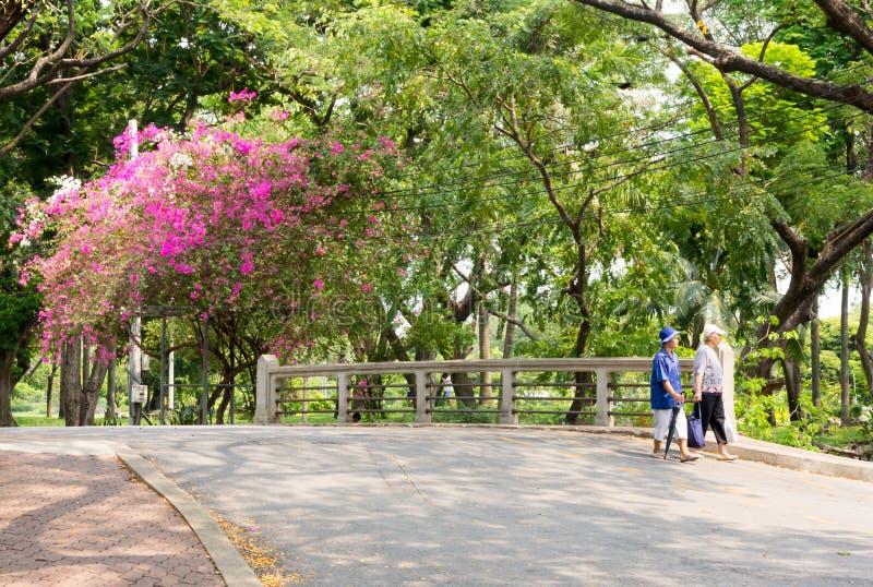 Deux dames thaïlandaises marchant par le parc de Lumphini, Bangkok, Thaïlande photos stock