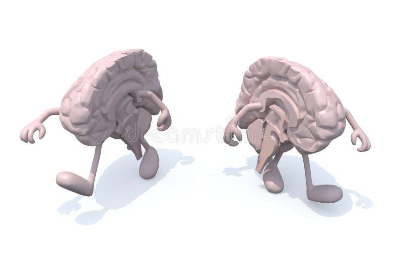 Deux demi cerveaux qui marchent illustration stock