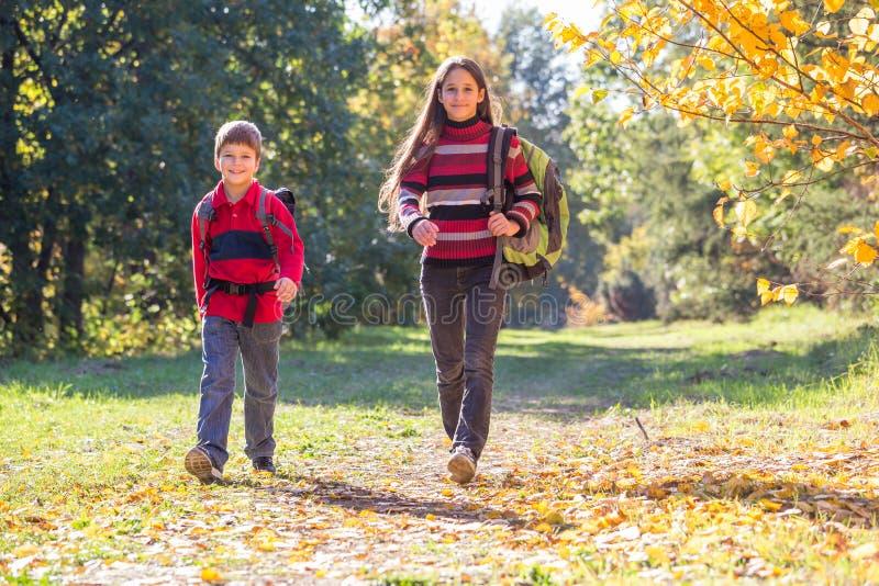 Deux enfants marchant sur la forêt d'automne avec des sacs à dos photographie stock