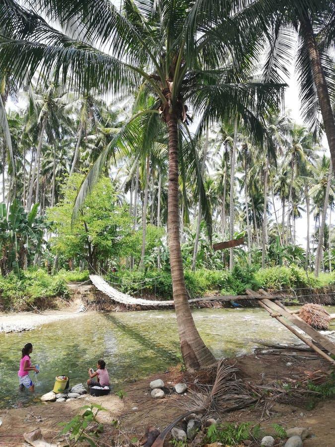 Deux femmes de Mangyan faisant leur blanchisserie en rivière sur Mindoro, Philippines photos stock
