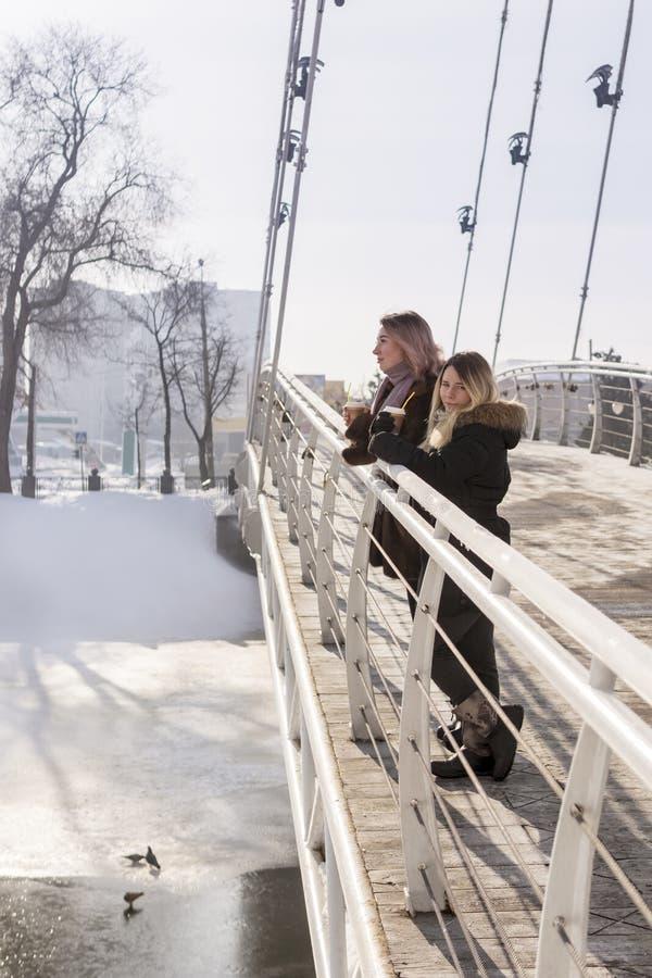 Deux femmes sur le pont images stock