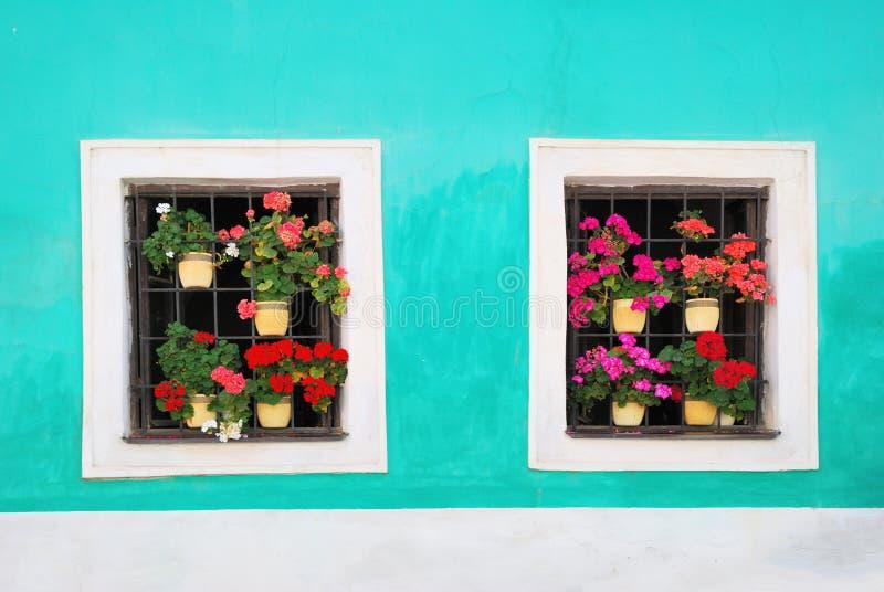 Deux fenêtres décorées des fleurs colorées fraîches images stock