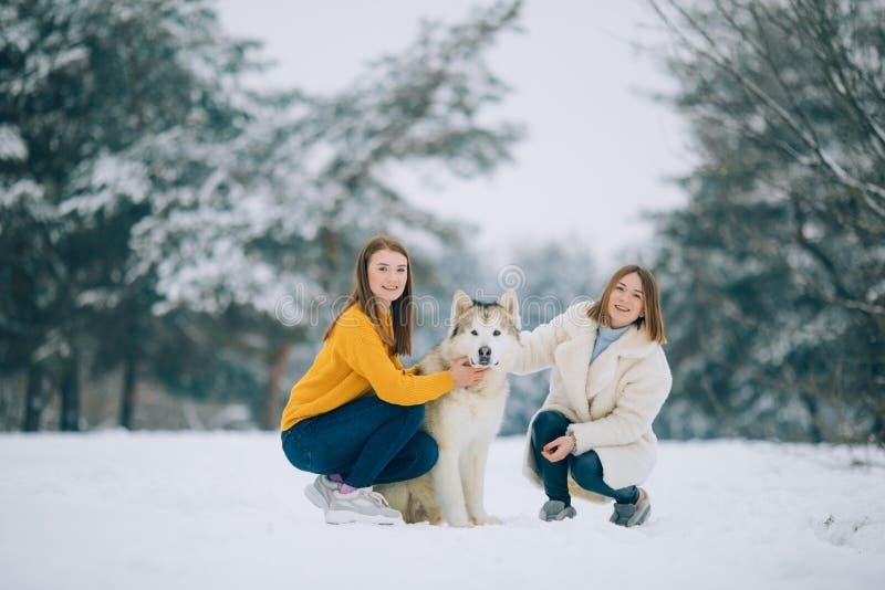 Deux filles marchent avec un Malamute d'Alaska de chien en hiver images stock