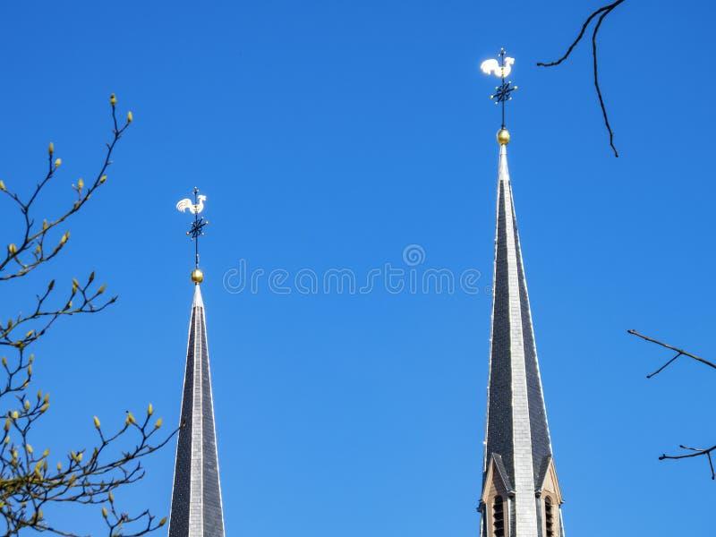 Deux flèches d'église ont complété par des girouettes contre les branches de bourgeonnement d'un ciel bleu clair et d'arbre de ma image libre de droits