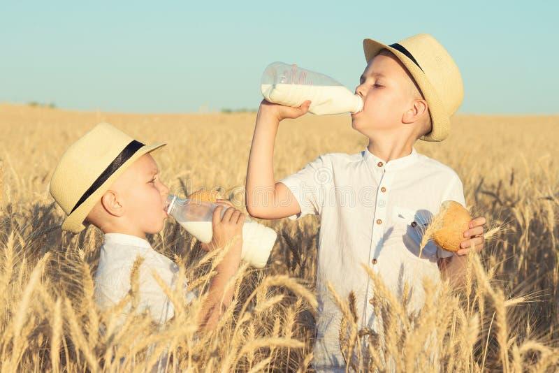 Deux frères mangent des petits pains et boivent du lait sur un champ de blé photographie stock libre de droits