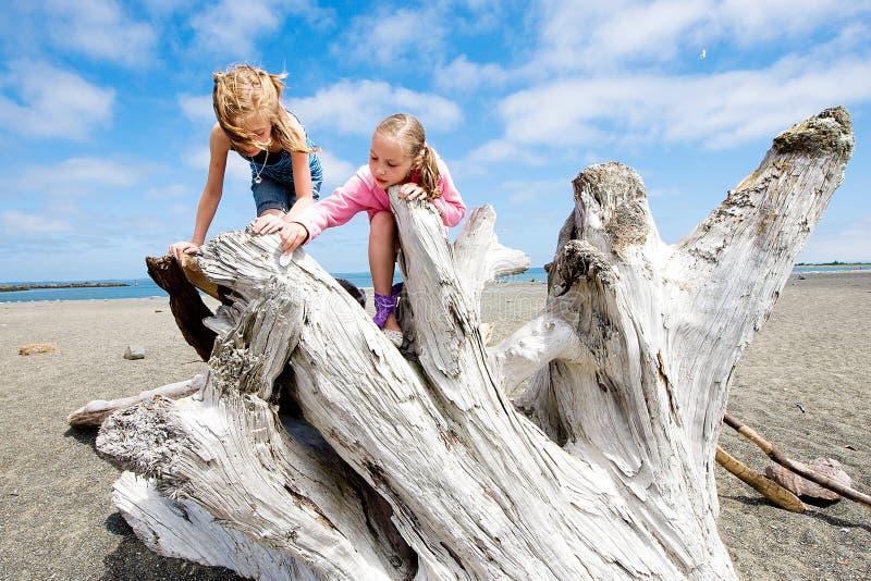 Deux gosses jouant sur une plage sablonneuse images stock