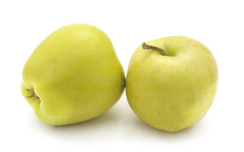 Deux grandes pommes photographie stock