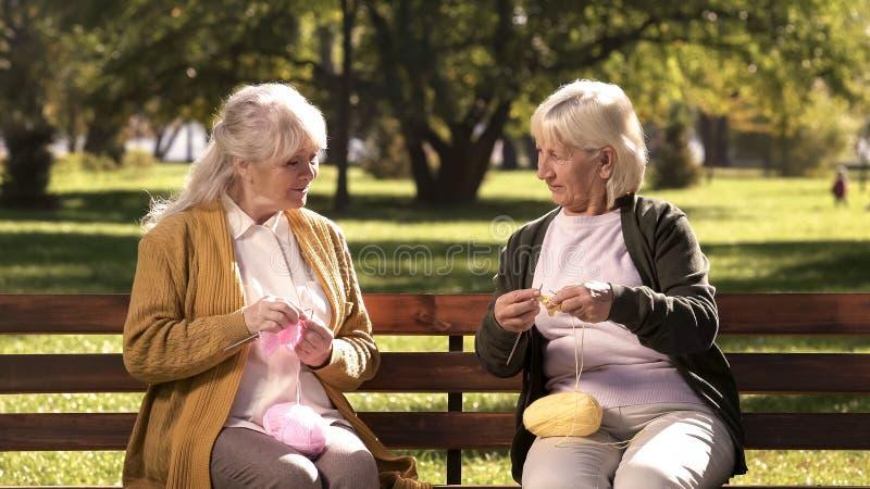 Deux grands-mères heureuses tricotant pour leurs petits-enfants s'asseyant sur le banc en parc photographie stock libre de droits
