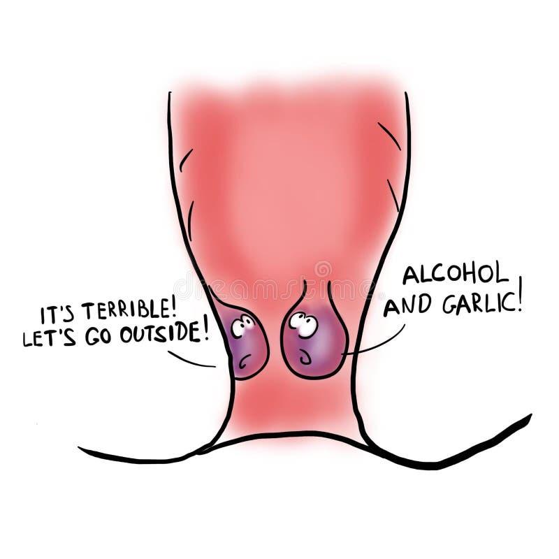 Deux hémorroïdes parlent dans le rectum illustration libre de droits