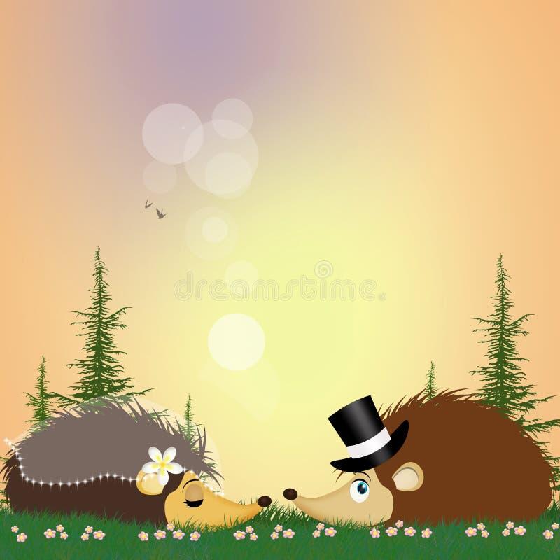 Deux hérissons se mariant  illustration stock
