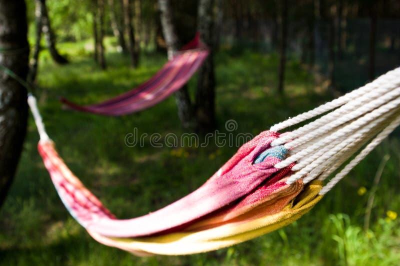 Deux hamacs colorés dans le jardin photos libres de droits