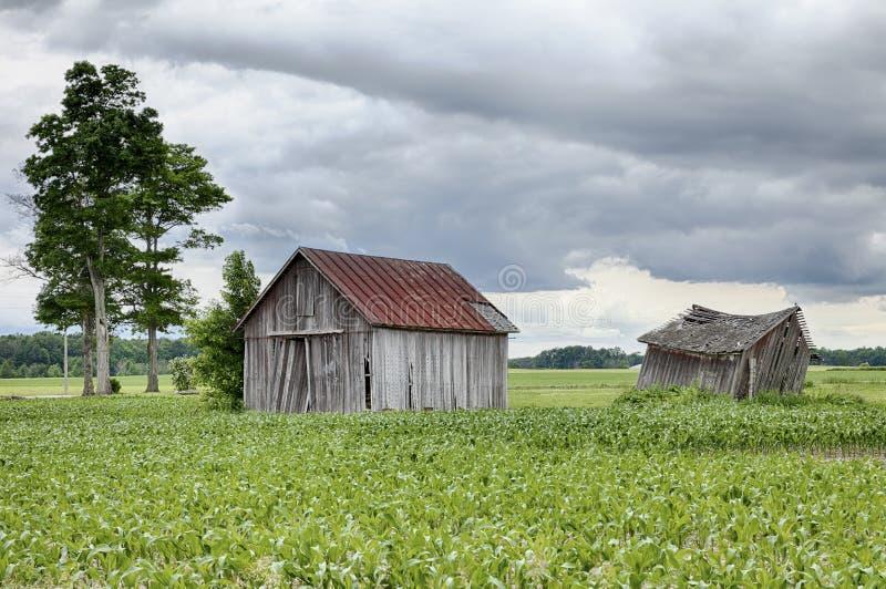 Deux hangars de ferme en Ohio images libres de droits