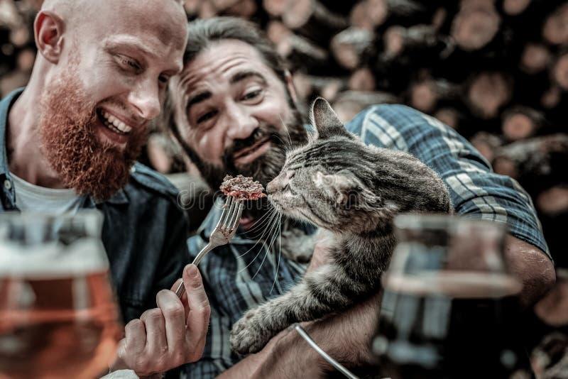 Deux hommes aimables alimentant un chat égaré photos libres de droits