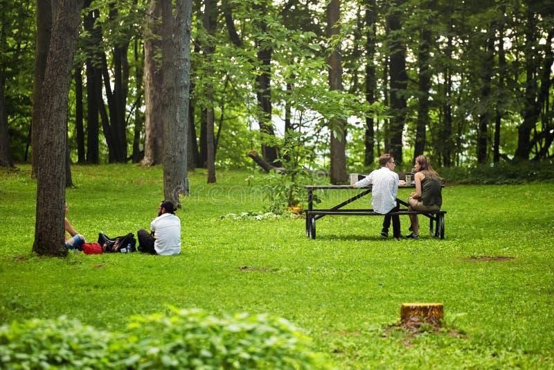 Deux jeunes couples se reposant sur l'herbe et le banc dans la forêt et ayant une conversation en parc royal de bâti, Montréal, C images stock