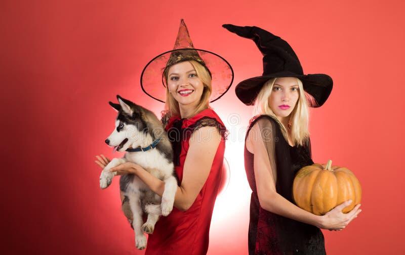 Deux jeunes femmes émotives dans des costumes de Halloween sur la partie au-dessus du fond orange avec le potiron Photo de deux j photographie stock libre de droits