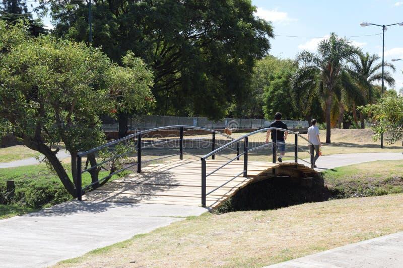 Deux jeunes hommes marchant le long du vieux pont en bois en parc image libre de droits