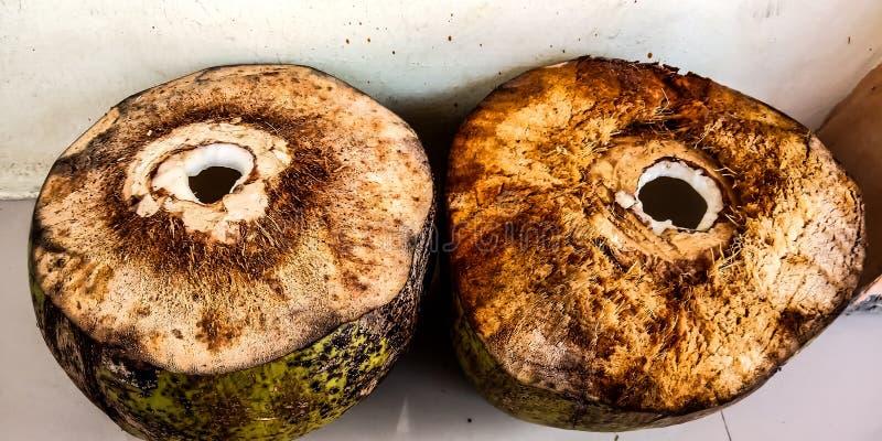 Deux jeunes noix de coco fraîches prises de l'eau photo stock
