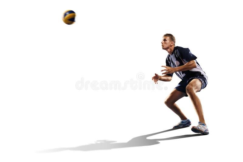 Deux joueurs de volleyball professionnels d'isolement sur le blanc images stock