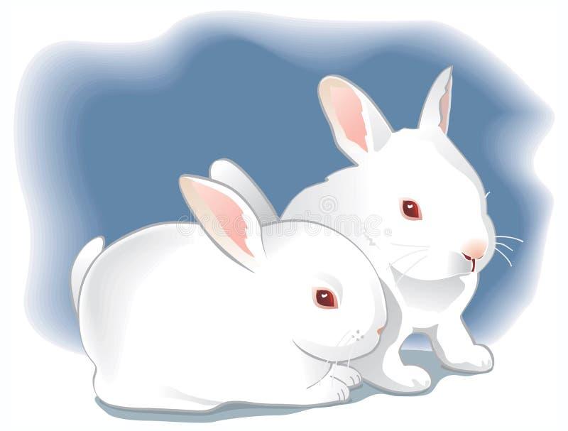 Deux lapins blancs mignons de chéri. Illustration illustration de vecteur