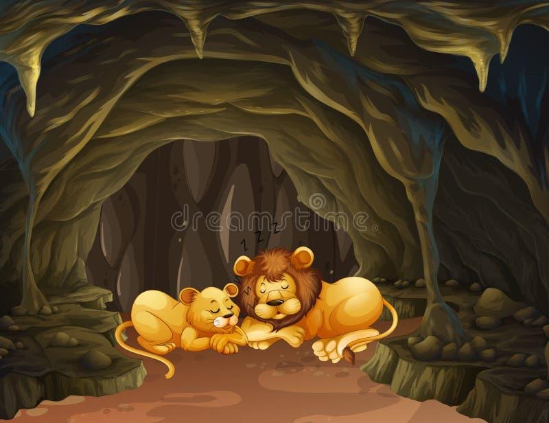 Deux lions dormant dans la caverne illustration stock