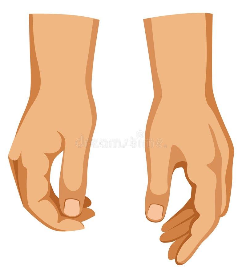 Deux mains illustration de vecteur