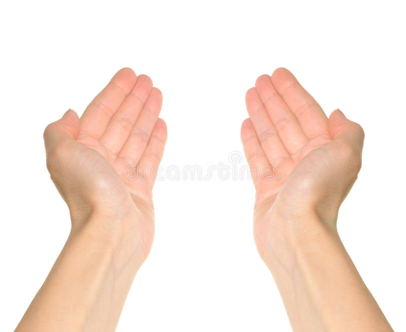 Deux mains photo stock