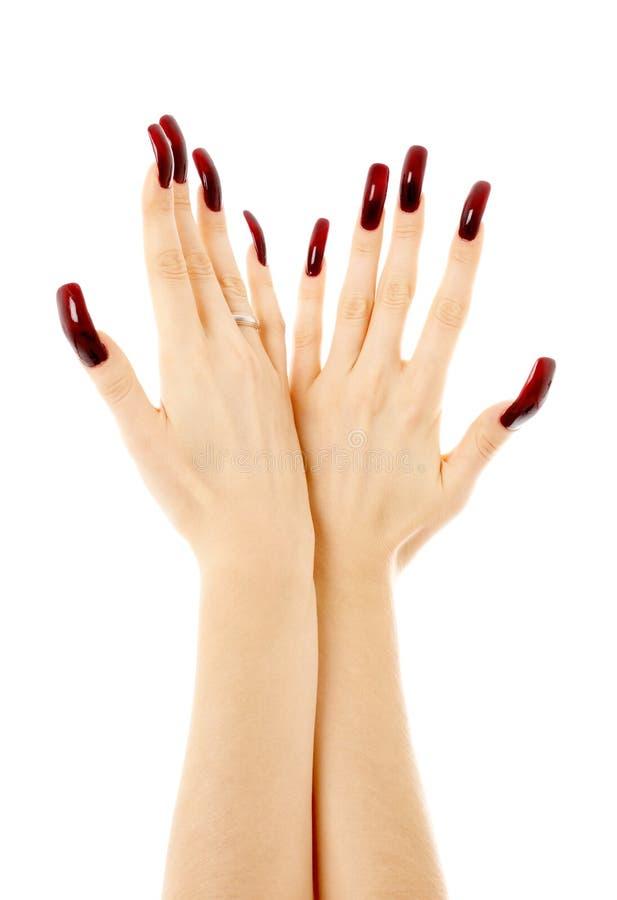 Deux mains avec de longs clous acryliques