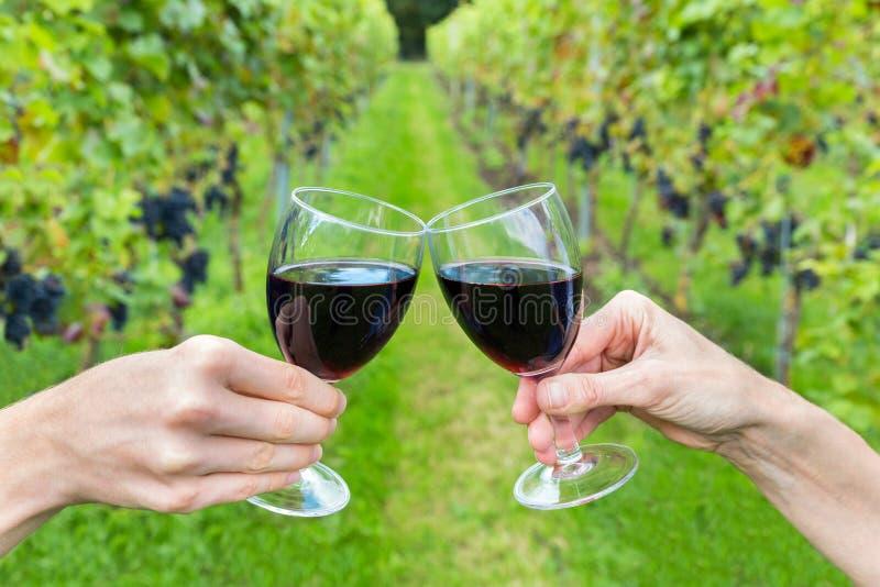 Deux mains grillant avec des verres de vin dans le vignoble photo stock
