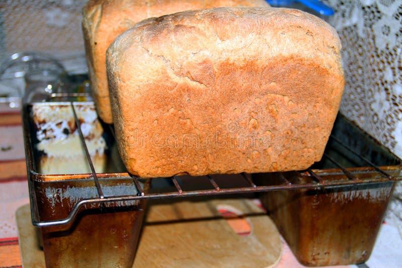 Deux miches de pain ont tiré seulement du four photographie stock libre de droits
