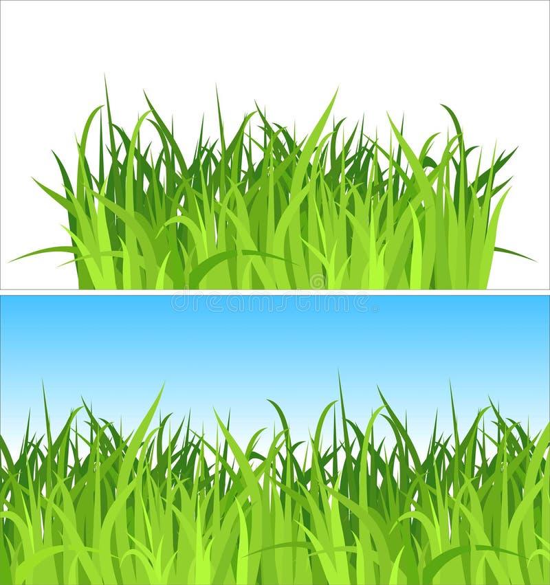 Deux milieux d'herbe/vecteur illustration de vecteur