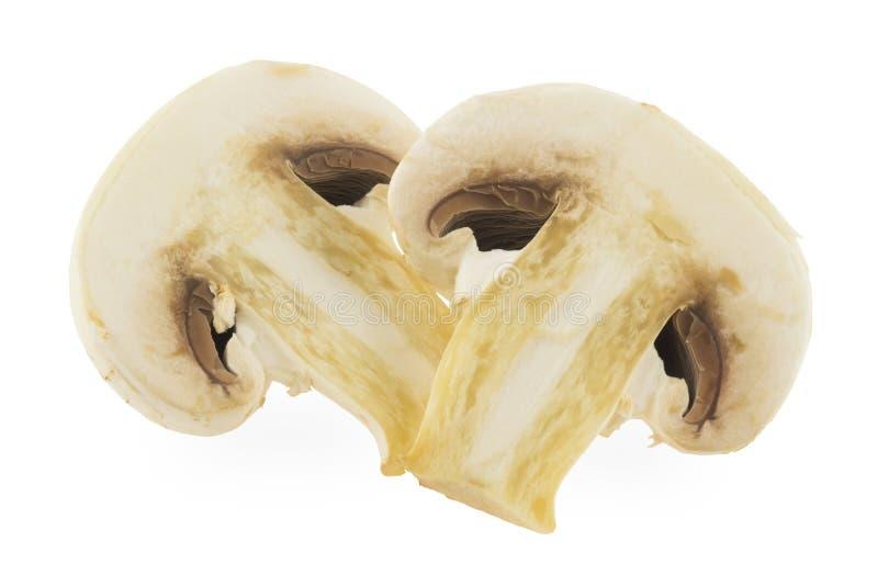 Deux moitiés d'un champignon de champ photographie stock