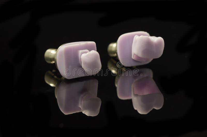 Deux molaires de bloc verre-en céramique de Disilicate de lithium pour le DAO photographie stock