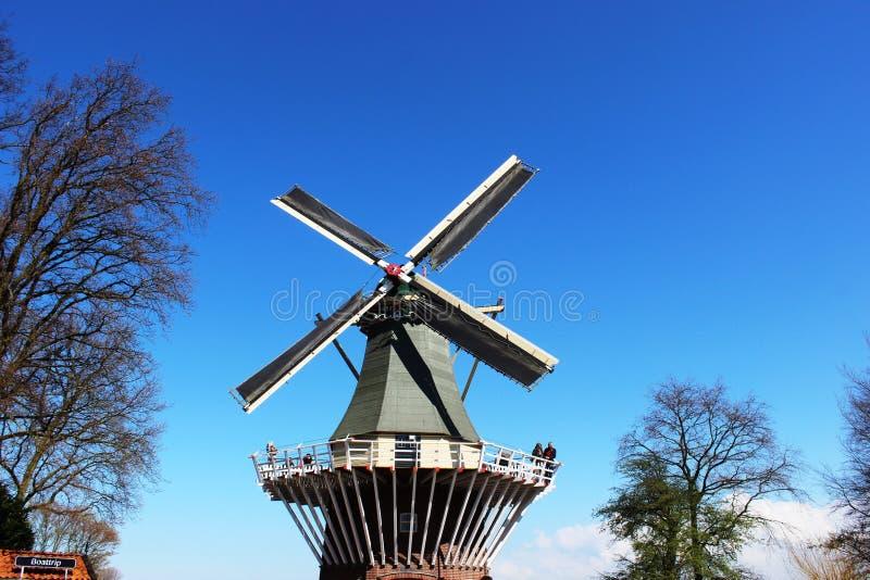 Deux moulins à vent néerlandais traditionnels avec des tulipes rame à la journée de printemps, Pays-Bas images libres de droits