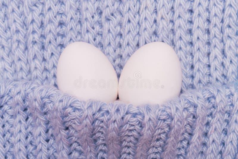 Deux oeufs blancs photo libre de droits