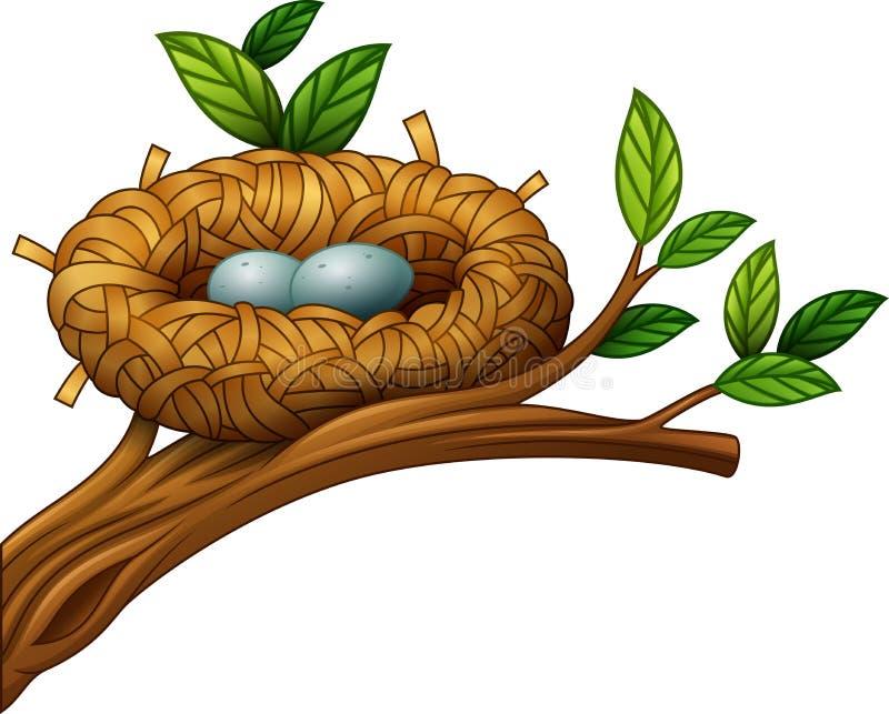 Deux oeufs dans le nid d'oiseau illustration de vecteur